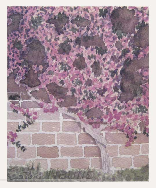 Espalier Watercolor